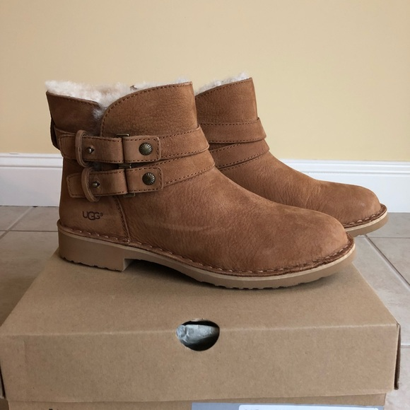 2c5c0aa265a Women's Ugg Aliso boot 7.5 chestnut NEW in box NWT